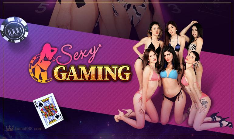 เกี่ยวกับเรา Sexy Gaming เซ็กซี่เกมมิ่ง เซ็กซี่บาคาร่า สมัครฟรีโบนัส